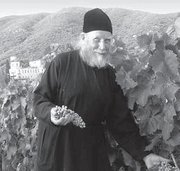 Athos vinberg odlas för hand