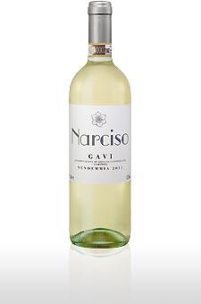 Gavi Narciso