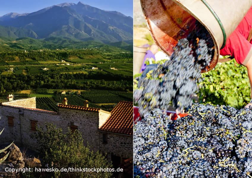 Languedoc landskap