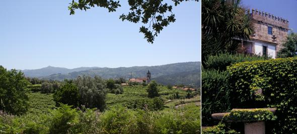 Grönt vinlandskap och till höger die Quinta de Azevedo