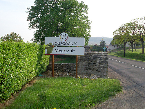 Welcome to Meursault Bourgogne