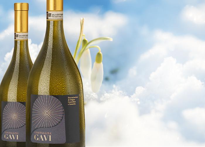 Månadens vin i mars
