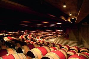 C Montes winery 08 300x200