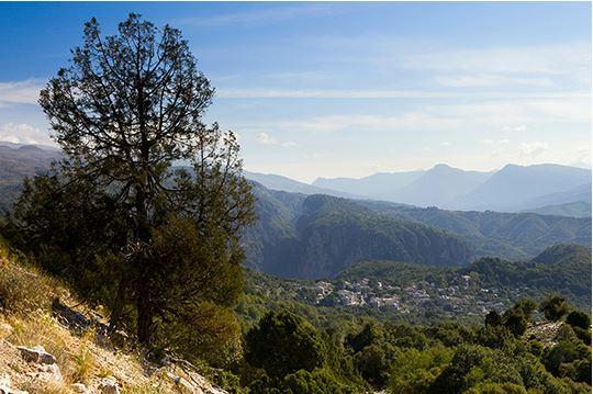Bulgarien © iStock