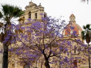 Chiesa Madre, den viktigaste kyrkan i den gamla staden Avola. Copyright: iStock.com