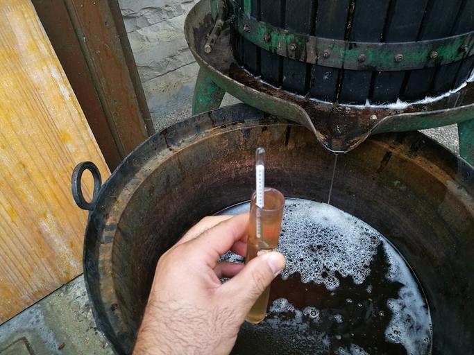 Mätning av socker i vinmusten. ©robypangy