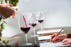 Viinprovning 300x200