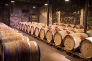 Trä eller inte, det får vinmakaren avgöra. (Källa: dMz (CC0-licens) / pixabay.com)